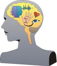 mozgani.jpg